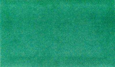 Design Schmutzfangmatte Bermuda Green - von wash and dry
