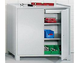 Wolf Werkzeugschrank mit Füßen - HxBxT 1000 x 1000 x 500 mm, Trennwand, je Seite 1 Schublade und 2 Fachböden