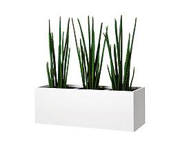 Pflanzengefäß - kniehoch, für 3 Pflanzen
