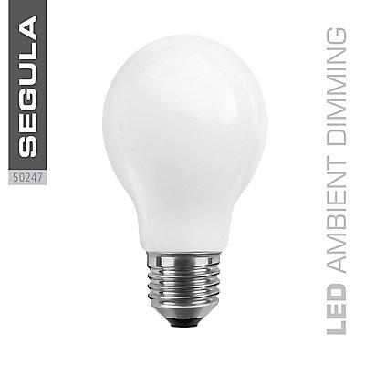 LED Glühlampe opal - 8 Watt