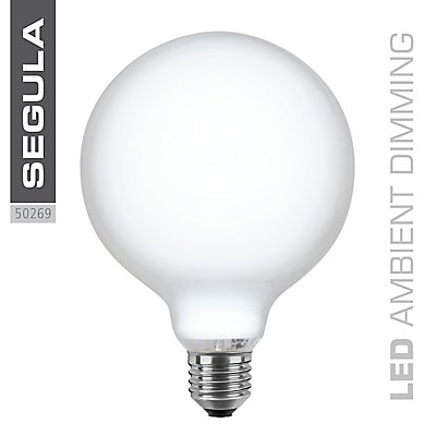 LED Glühlampe Globe Ø125 mm - opal