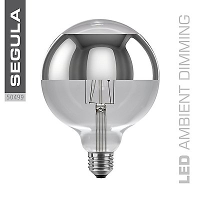 LED Glühlampe Globe ringverspiegelt - Durchmesser 125 mm
