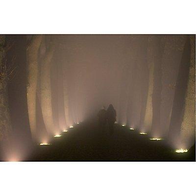 DASAR ES111 Bodeneinbau-leuchte, rund, Edelstahl 316,max. 75W, IP67