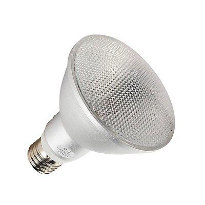 COB LED Retrofit , PAR30,Leuchtmittel, E27, 3000K,anodized aluminium