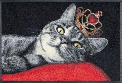 Design Türmatte Royal Cat - von wash and dry, 50x75 cm