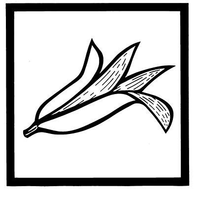 Jeu d'autocollants pour identification du couvercle - jeu de 7 autocollants - noir / blanc