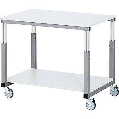 RAU Arbeitsplatz-System, höhenverstellbar von 650 – 1000 mm - Tischwagen mit 4 Lenkrollen