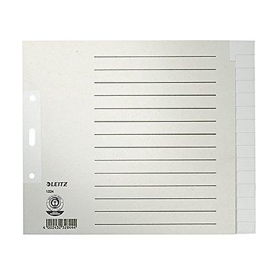 Leitz Register 12240085 blanko DIN A4 15teilig Papier grau