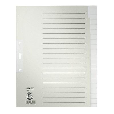 Leitz Register 12200085 blanko DIN A4 20teilig Papier grau