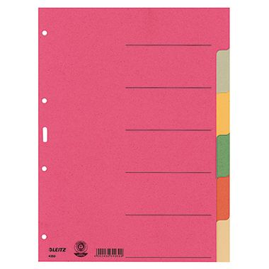 Leitz Register 43580000 blanko DIN A4 Karton farbig sortiert