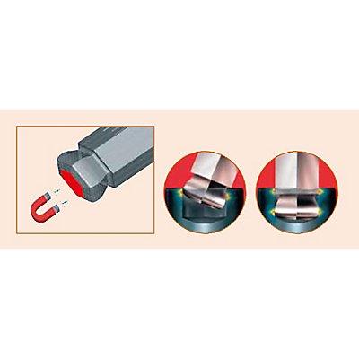 PROJAHN | Winkelstiftschlüssel Satz Innen-6Kant lange Ausführung mit Mutltigriff und Spez