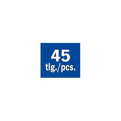 PROJAHN | Präzisionswerkzeug Einlage 45tlg