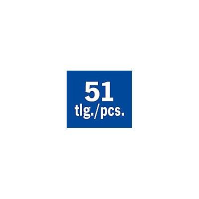 PROJAHN   Stecknuss Einlage 51tlg zöllige Werkzeuge